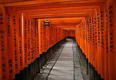 Fushimi Inari Shrine - near Kyoto, Japan