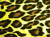 Tiger pattern for background