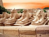 ancient statues in a Egypt