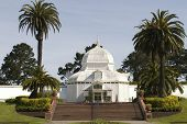 Conservatory Of Flowers Close Up