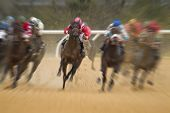 Motion blurred race horse action