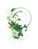 Fondo de primavera de flores decorativas