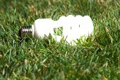 Bombilla de luz verde brillando intensamente en la hierba