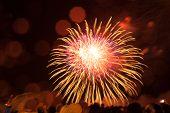 Fireworks Light Up The Sky, Independence Day Celebration. Night Show. Victory Day. Festive Fireworks poster