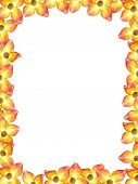 Flowery Picture Frame