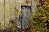 Abstract Strange Background. Old Wooden Door.old Door. Old Doors. Image Of Wooden Door. Old House. O poster