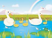 Duck Tale