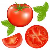 Tomato With Slices Of Tomato And Basil Leaves, Isolated On White