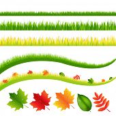 Grass And Leaves Set, Isolated On White Background, Vector Illustration