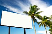 Tropical Setting With Billboard