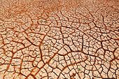 Cracked earth as texture background.