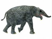 Deinotherium Young Mammal 3d Illustration - Deinotherium Was An Elephant Mammal That Lived In Asia,  poster