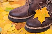 Close Up Of Brown Leather Shoes With Small Yellow Leaf Maple On Colorful Autumn Maple Leaves. Walk I poster