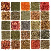 Dried herb, spice, flower and fruit selection used in cooking and medicinal healing, in patchwork de