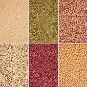 Pulse, selection, bean, pea and grain selection in abstract design with borders. Quinoa grains, mun