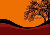 Halloween Black Tree Background
