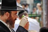 BNEI BRAK, ISRAEL - SEPT 22: An orthodox Jew in glasses and black hat picks citrus before the holida