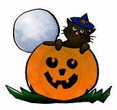 Halloween  2008 Series