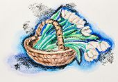 Tender tulip flowers in wicker basket still life, watercolor with slate-pencil painting