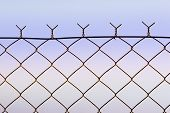image of chicken-wire  - top of wire fence against soft dusk sky - JPG