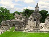 Mayan Temples  In Tikal