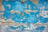 image of rusty-spotted  - blue wood grungy background - JPG