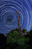 Zion National Park Long Exposure Star Trail Image