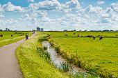 Dutch Landscape With Bicyclists