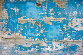 picture of rusty-spotted  - blue wood grungy background - JPG