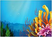 Illustration of the corals under the sea