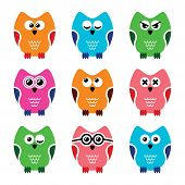 Owl cartoon vector icons set