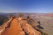 Trail Into A Wild Canyon