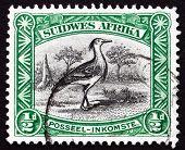 Postage Stamp Zuid-West-Afrika 1931 Koritrap, vogel