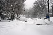 Blizzard Street