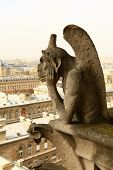 stock photo of gargoyles  - PARIS  - JPG