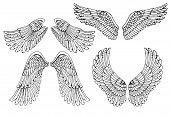 Set of four different vector angel wings