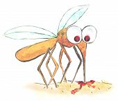 Funny Illustration Of A Mosquito