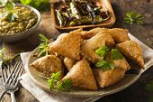 pic of samosa  - Homemade Fried Indian Samosas with Mint Chutney Sauce - JPG