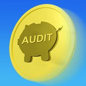Audit Gold Coin Shows Auditing And Inspection Of Finances