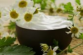 natural cosmetic cream lotion with green camomile