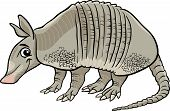 picture of armadillo  - Cartoon Vector Illustration of Cute Armadillo Animal - JPG