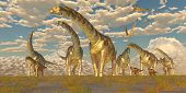 foto of behemoth  - Hypsilophodon and Pteranodon dinosaurs accompany a herd of Argentinosaurus on their yearly migration to warmer temperatures - JPG