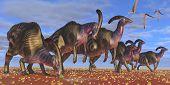 Parasaurolophus Herd