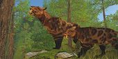 Saber-toothed Cat Forest