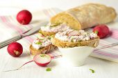 Ciabatta with cottage cheese and radish pate