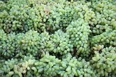 Fresh Green Grapes In A Market