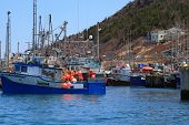 Fishing Boats Are Moored In Harbor Ready For Long Weekend