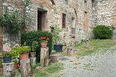 Stony antique wall with flowers in italian village, Tuscany, Chianti, Italy, Europe