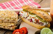 Pulled Pork Sandwich Panini