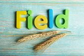 Field word formed with colorful letters on wooden background
